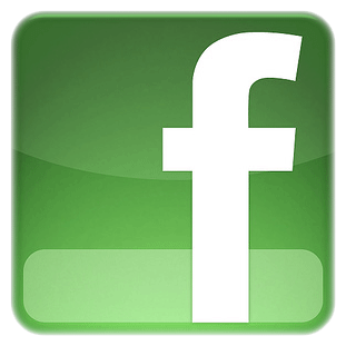 logo facebook vert
