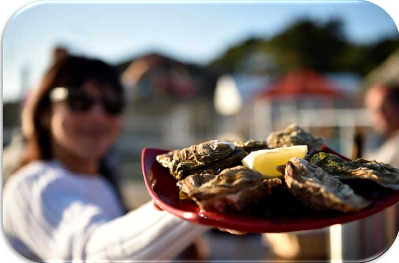 huitres-gastronomie-bretagne-secrete