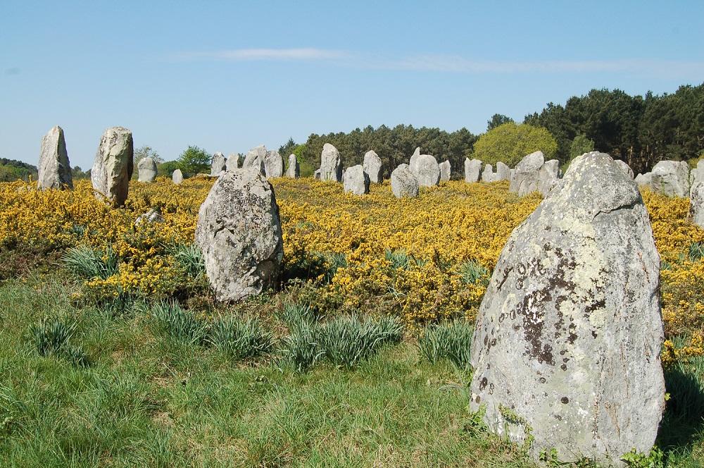 Côte des mégalithes - Morbihan - Bretagne 304