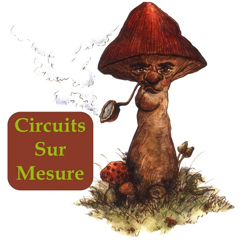 Circuits sur mesure