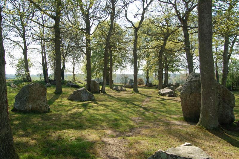megalithe-druide-bretagne-secrete