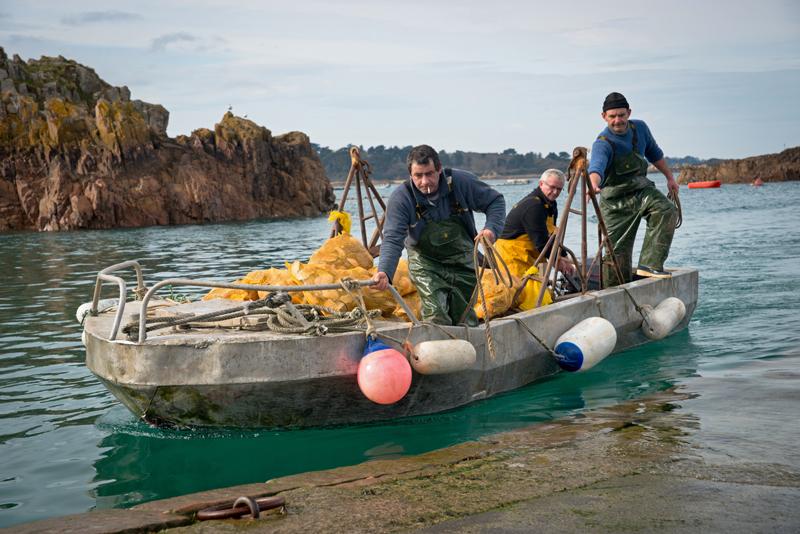 pêcheur-pêche-en-mer-bretagne-secrete